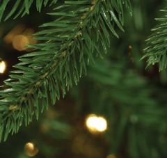 Christmas Wreath Sale 2019